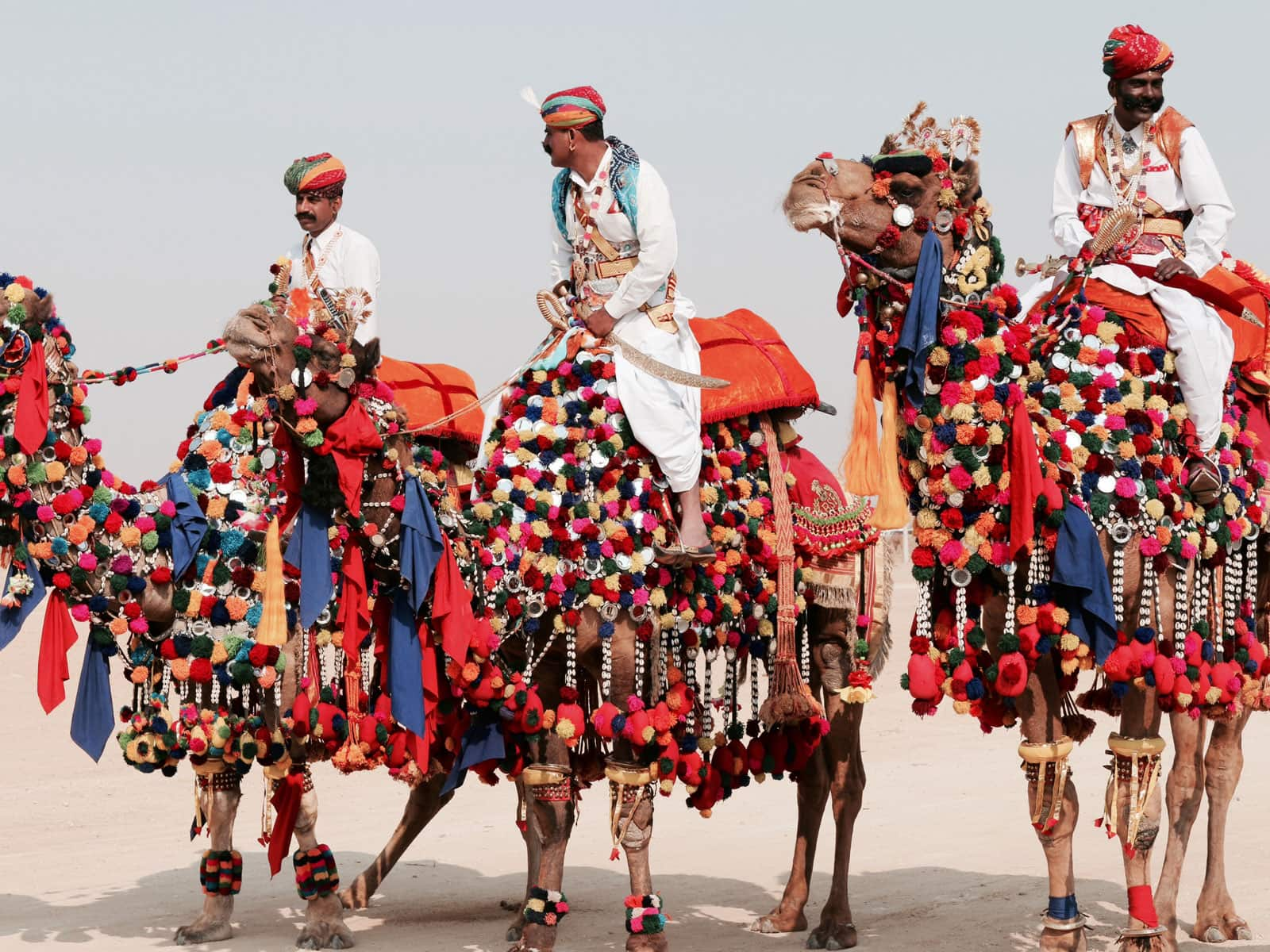 Culture Of Rajasthan 1 Routemate